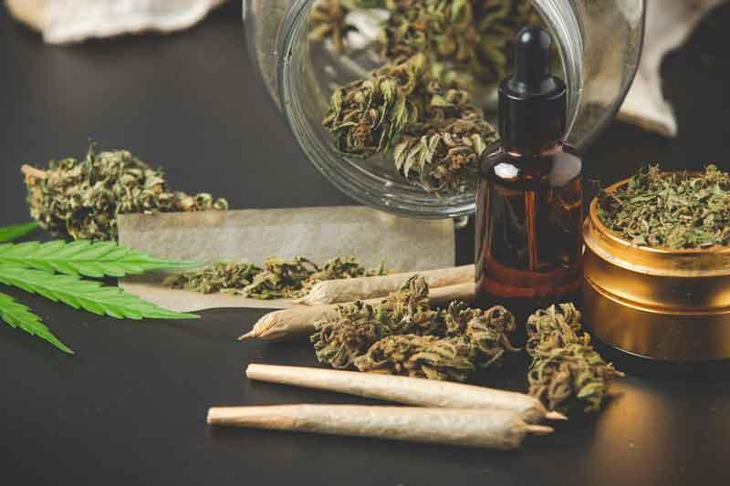 גידלת כמה צמחים של סמים לעישון פרטי – מה צפוי לך?