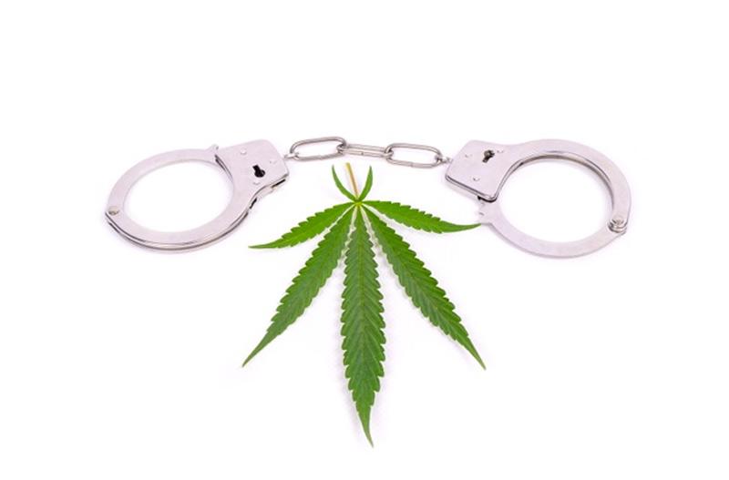 סמים בדיגיטל: סחר בסמים באמצעות הטלגרם